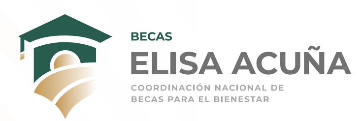 Becas Elisa Acuña: todas las modalidades en el 2020